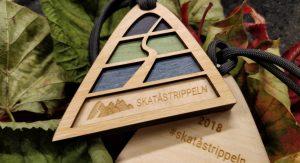 Skatåstrippeln medalj 2018